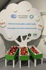 在聯合國氣候會議中用餐需要付出多少氣候代價