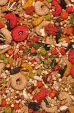 從毒理學看我國食品安全問題